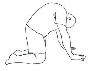 training der Brustwirbelsäule